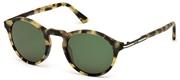購入またはモデルの画像を拡大 Tods Eyewear TO0179-56N.